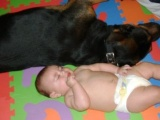 Rottweiler pics - Nikki thinks she can take Moose on