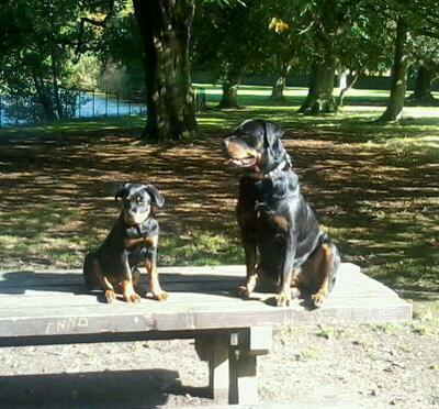 Tara and Misty on the park bench